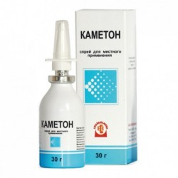 Buy Kameton spray can 30 g