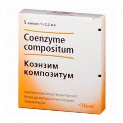 Buy Coenzyme compositum solution 2.2 ml ampoules blister 5 pcs